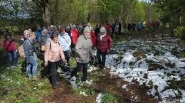 150 Teilnehmer: Eine Kräuterwanderung der ganz besonderes Art