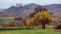 Malerische Rhön im Herbst: Traumhafte Eindrücke aus der Natur