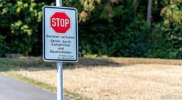Das meinen die O|N-Leser über den gesperrten Rauschenberg