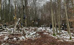 Polizeikräfte: A49-Gegner begeben sich auf hohen Bäumen in Gefahr!