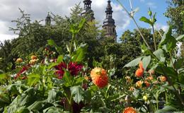 Hochsommer im September: Osthessen kommt ordentlich ins Schwitzen