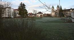 Stadt vergibt Gutachten für ehemalige Klostergärtnerei