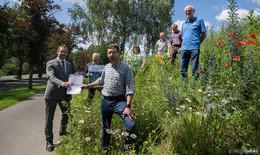 Erfindung aus dem Allgäu soll Blühwiesenbestand im Landkreis sichern