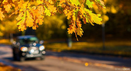 Mehr Sicherheit im Straßenverkehr: Fahrzeugbeleuchtung überprüfen