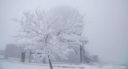 Schneemonate kommen noch - Aktuell: Zehn Grad plus und Regen
