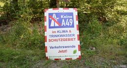 Dannenröder Forst: Grüne fordern Verkehrswende und Klimaschutz