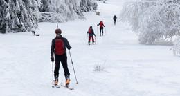 Das Wunder des Taufstein-Gletschers: Langlauf im Vogelsberg geht noch