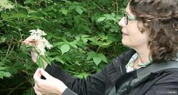 Der Eisenberg ruft zur stillen Einkehr: Unterwegs mit Kräuterfrau Christa Becker