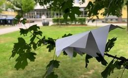 Richard-Müller-Schule verabschiedet Schüler der kaufmännischen Berufsschule