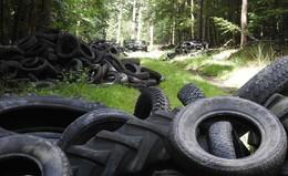 Umweltsünde in gigantischem Ausmaß: Bis zu 1.000 Altreifen im Wald entsorgt