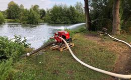 Zu wenig Sauerstoff: Tote Fische im Aueweiher - Feuerwehr rückt mit Pumpen an