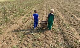 Neues Förderprogramm 100 nachhaltige Bauernhöfe gestartet