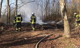 Feuerwehreinsatz im Wald: Reisighaufen steht in Flammen