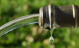 Grüne fordern Gutachten zur Wasserknappheit im Vogelsberg