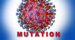 In Quarantäne: Kind positiv auf britische Corona-Mutation B 1.1.7. getestet