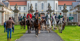 Traditionelle Schleppjagd vor Schloss Fasanerie: 70 Jagdreiter mit dabei