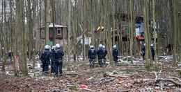 Nach drei Wochen: Dannenröder Forst schon wieder besetzt