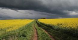 Zum Glück: Der Deutsche Wetterdienst hebt Unwetterwarnungen auf