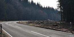 Achtung: Strecke Neuhof-Giesel für ein Jahr lang voll gesperrt