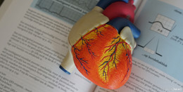 Volkskrankheit Herzinsuffizienz - Symptome frühzeitig erkennen