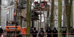 Erneut 35 Personen im Dannenröder Forst in Gewahrsam genommen