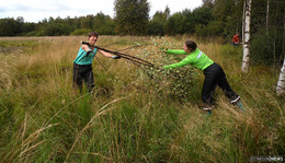 40 Freiwillige im Einsatz für mehr Artenvielfalt