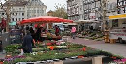 Wochenmarkt wird auf den Theodor-Heuss-Platz verlegt