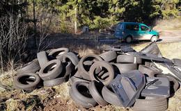 Der Wald ist keine Müllhalde! Ökosystem leidet massiv unter Folgen