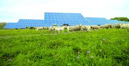 Viel Expertise bei der RhönEnergie Fulda-Gruppe