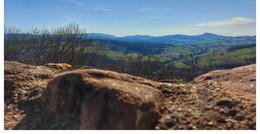 Bis zu 20 Grad am Wochenende: Endlich kommt der Frühling nach Osthessen