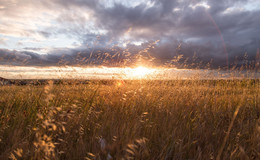 Kühlere Luft im Anmarsch: Temperaturen sinken auf knapp zweistellige Werte