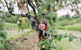Wir brauchen keine Goji-Beeren! Hier dürfen Äpfel und Birnen gepflückt werden