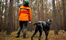 Klimanotstand im Wald: IG Bau fordert mehr Forstpersonal