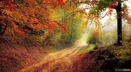 Covid-19-Situation zu Beginn des Herbstes: Es ist noch nicht vorbei