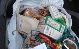 Biotonnen werden bei schlechter Mülltrennung nicht mehr geleert