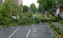 Sabine wird auch Osthessen treffen - Orkan ab Sonntag erwartet