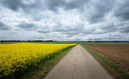 Frühling pirscht sich zögerlich heran: Wochenende sehr wolkenreich