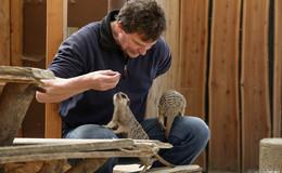 Corona und Geflügelpest: Zweite Saison im Schottener Vogelpark in Gefahr